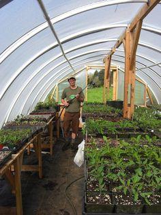 Simple Greenhouse Plans - Fiddlehead Farm