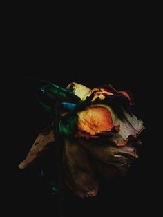 """Billy Kidd - """"Decaying Flowers"""""""