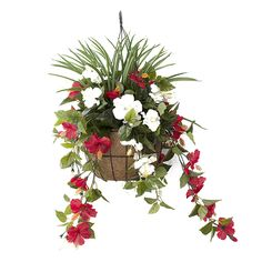 Jardinière Suspendue Hibiscus Rouges & Blancs 18