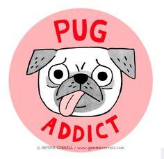 Hello.  My name is Sharon and I am addicted to Pugs.........