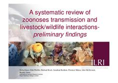Delia Grace, Feb 2011: A systematic review of zoonoses transmission and livestock/wildlife interactions- preliminary findings