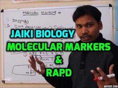 Jaiki biology: Molecular Markers: RAPD