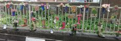 Penrith looks lovely at the moment with the hanging baskets and planters. We love the quirky, planted boots by Penrith TIC!