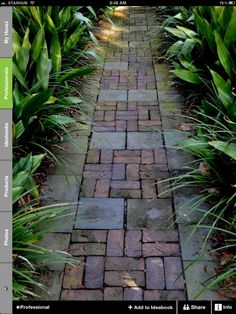 Reusing pavers and bricks. Much more interesting and professional looking than just using bricks.