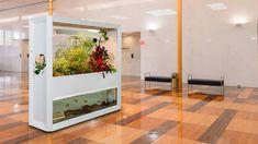 new LED Design Aquaponics, Divider, Room, Gardening, Led, Furniture, Home Decor, Panel Room Divider, Environment