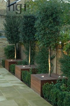 Harpur Garden Images Ltd :: gilday14 Contemporary modern minimal stylish family urban town garden with lighting uplight wooden box bay tree standard Laurus nobilis formal style path paving slab fence container planter October autumn Designed by Justin Greer for Mr and Mrs Gilday Wandsworth, London UK Marcus Harpur Contemporary, modern, minimal, stylish, family, urban, town, garden, lighting, uplight, wooden, box, bay, tree, standard, Laurus, nobilis, formal, style, path, paving, slab…