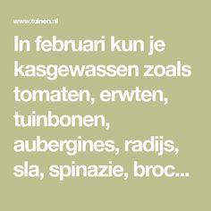In februari kun je kasgewassen zoals tomaten, erwten, tuinbonen, aubergines, radijs, sla, spinazie, broccoli, uien, prei, bloemkool, paprika's, pepers, spruitkool, meloenen en komkommers zaaien