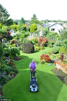 Mr Grindle – whose lawn has appeared on Gardeners' World on BBC 2 – has spent 30 hours a week for the past 40 years tending his garden in Tickhill, Doncaster AMAZING! Back Garden Design, Backyard Garden Design, Garden Art, Back Gardens, Outdoor Gardens, Minimalist Garden, Front Yard Landscaping, Garden Projects, Beautiful Gardens