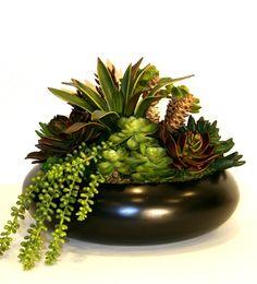 Artificial Mixed Succulents Dish Garden Dish Garden, Artificial Succulents, Plants, Color, Design, Planters, Colour, Plant, Planting