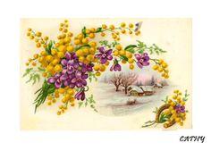 Gallery.ru / Фото #30 - cartes - florette Cottage Art, Canvases, Print Patterns, Postcards, Fonts, Printables, Flowers, Painting, Vintage