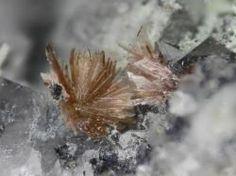 Annabergite - Clara Mine, Rankach valley, Oberwolfach, Wolfach, Black Forest, Baden-Württemberg, Germany FOV : 3 mm Crystals And Gemstones, Metal, Catalog, Rocks, Beautiful, Fossils, Stones, Rhinestones, Crystals