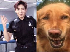I see no difference between this dog and jungkooks face haha