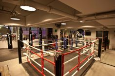 Martial Arts Gym, Fight Gym, Gym Design, Dojo, Ufc, Hong Kong, Inspired, Ring, Rings