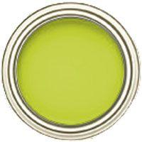 benjamin moore eccentric lime, a gorgeous chartreuse paint color