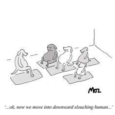 One for the yogis. Yoga Cartoon, Downward Dog, Yoga Inspiration, Yoga Poses, Cartoons, Thankful, Instagram, Fictional Characters, Cartoon