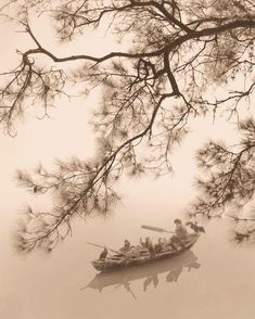 Photography that looks like Chinese painting By artist Don Hong-Oai / Vietnam Chinese Painting, Chinese Art, Chinese Prints, Born In China, Art Chinois, Art Asiatique, Living In San Francisco, Art Graphique, Landscape Photographers