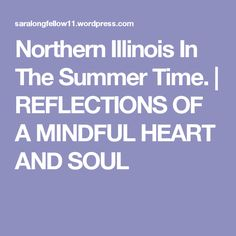 Northern Illinois In The Summer Time. | REFLECTIONS OF A MINDFUL HEART  AND SOUL