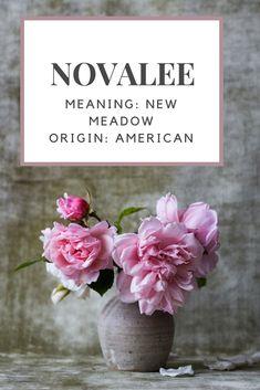 Baby Girl Name: Novalee.| Meaning: New Meadow. | Origin: American.