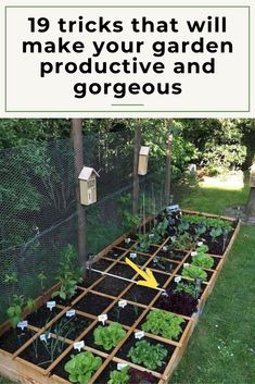 9 creative garden hacks tips that every gardener should know garden ideas gardening ideas gardening for beginners gardening design gardening tools gardening hacks gardening and landscape gardens and gardening ideas gardening tips 940 gardeningtips Backyard Vegetable Gardens, Small Backyard Gardens, Vegetable Garden Design, Small Gardens, Backyard Landscaping, Landscaping Ideas, Backyard Ideas, Garden Tools, Small Vegetable Garden Ideas On A Budget