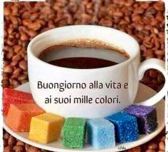 Good morning to life and its many colors.