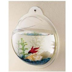 Wall Mount Fish Bowl Aquarium Tank Beta Goldfish. This would be cool to have!