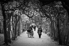 in the park by Adam Sandurski on 500px