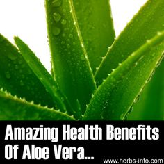 ❤ I've found the most incredible resources of Aloe Vera information! Click the link to learn more and please share! ❤