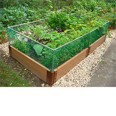 raised garden with rabbit fence and pebbles between? project for reetz?