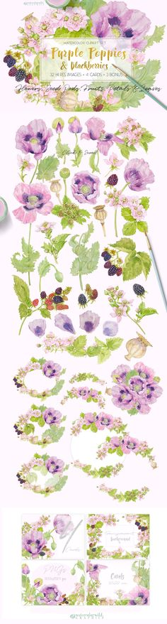 Purple Poppies&Blackberries-Clipart by watercolorwild.graphics on Wreath Watercolor, Watercolor And Ink, Watercolor Flowers, Purple Poppies, Crumpled Paper, After Life, Flower Clipart, Seed Pods, Creative Sketches