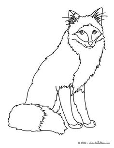 Fox Coloring Page More Forest Animals Sheets On Hellokids