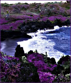 Black Sand Beach, Maui, Hawaii USA • A bizarre little rest stop on the road to Hana. I've been there....so cool!