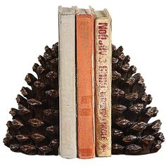 Dot & Bo Rustic Pinecone Bookends (110 SAR) ❤ liked on Polyvore featuring home, home decor, small item storage, books, fillers, decor, fall, inspirational home decor, rustic home accessories and book-end