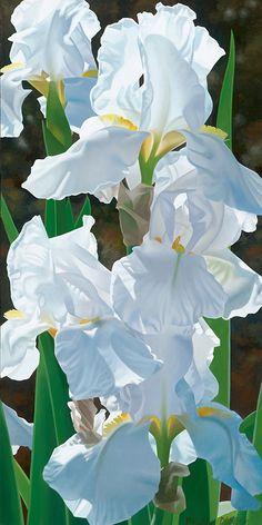 Brian Davis Art