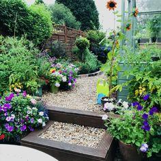 Small Narrow Garden Ideas, Patio, Outdoor Decor, Plants, Home Decor, Decoration Home, Room Decor, Plant, Home Interior Design