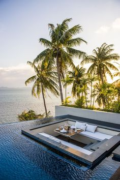 Exotic Pools For Luxurious Living #RealPalmTrees Amazing View  (Coconut Palms in the Horizon)