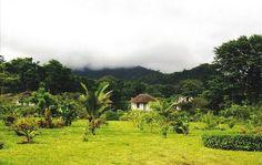Ilha de São Tomé