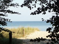 Strandhafer und Ostsee: Strandzugang im Seebad Ückeritz auf Usedom.