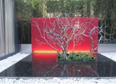 Landscape Designs~ Courtyard Blaze!
