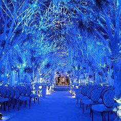 Another Preston Bailey amazement. I don't know Preston Bailey but this is bluetiful. Wedding Ceremony Ideas, Wedding Aisles, Tree Wedding, Wedding Themes, Wedding Photos, Christmas Wedding, Forest Wedding, Themed Weddings, Magical Wedding