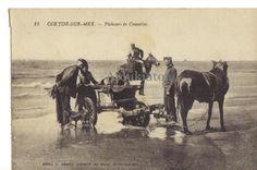 Coxide-sur-mer. Belgique. Pêcheurs de crevettes. Cheval ou âne tirant charette sur la plage.