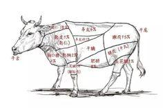 在魔都铺天盖地的潮汕牛肉火锅,你吃对了吗?