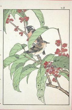 Imao Keinen (1845 - 1924): Ryukyuhitaki - Winter. Single Woodblock Prints 1891.