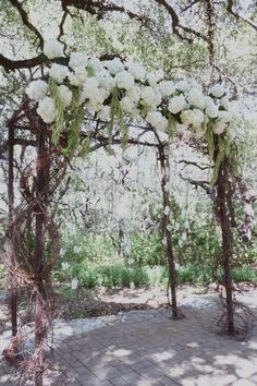 Hydrangea and amaranthus arc with suspended blooms. | Whim Florals