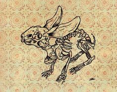 Rabbit Skeleton how cute is this critter? Skeleton Drawings, Skeleton Tattoos, Skeleton Art, Rabbit Skeleton, Animal Skeletons, Yarn Painting, Rabbit Tattoos, Forest Tattoos, Bone Tattoos