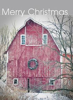 December 12, 2009 - Winter settled into northern Iowa last week, and a barn in Winnebago County is decorated perfectly for the holiday season. The Iowa Farm Bureau Spokesman wishes you and your family a safe and Merry Christmas and a Happy New Year.