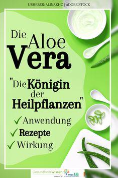 Aloe Vera Creme Selber Herstellen : einfacher kartoffelbalsam bei rissiger und trockener haut ~ Watch28wear.com Haus und Dekorationen