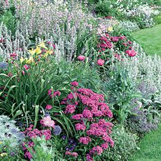 Pink and silver garden border | Sunset.com