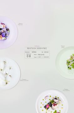 griottes.fr_monochrome2_ minimal yet informative! beautiful design