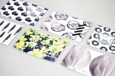 吃飯前看看這本書 - 種生 Taiwan Vegetable Seeds Book » ㄇㄞˋ點子靈感創意誌