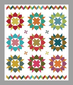 Another GREAT Swoon quilt!  Love the chevron borders!